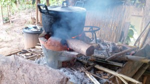 We serve food atleast 3 meals per day, mostly northern Thai local food and harvest from our farm. If you are also interested to cook with our chefs by using fire wood, welcome!