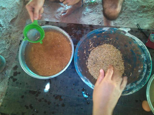 Sieve away the floating seed. We will plant only the seed which is sinking.