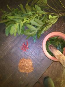 Prepare Tobacco, Chilli, and Neem Leave